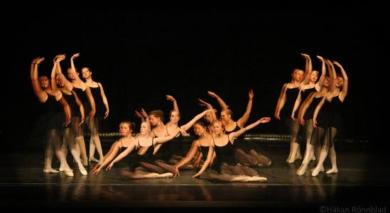 adrianas danshus