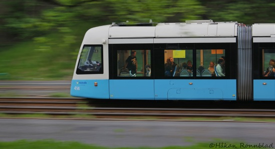 trams4 024ps