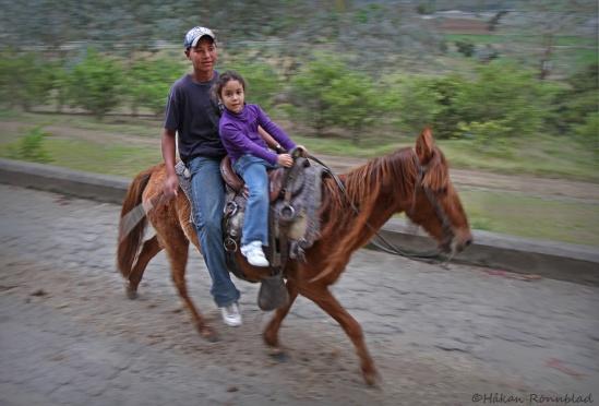 jarabacoa caballo2